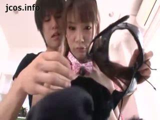 Playful japanisch kitty