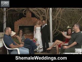 Alessandra matheus shemale casamento sexo