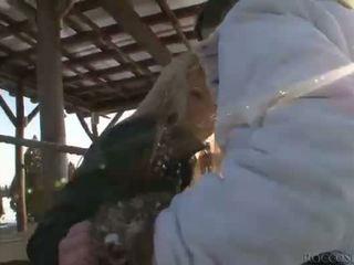 lambida, burro do caralho, ao ar livre