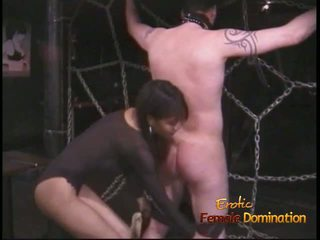 Extremely Horny Stallion Likes Being Tied up and Whipped