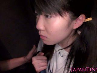 कमशॉट्स, जापानी, किशोर की उम्र