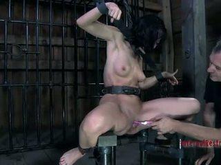 кицька тортур, бдсм, рабство