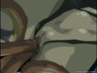 hentai, εμψύχωση, κινούμενα σχέδια