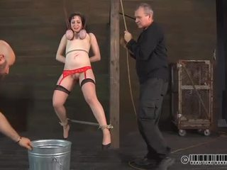 Balerina needs salbatic taming
