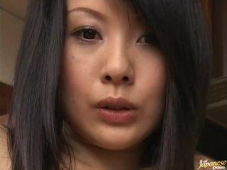 Asiatisch küken dominated