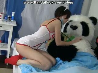 Cochon sexe à guérison une malade panda