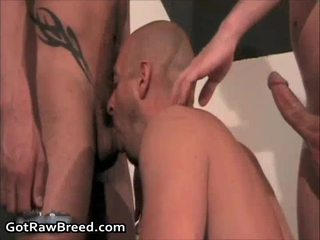 quality gay blowjob all, most bear suck gay all, you gay twink megasite more