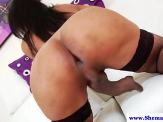 ideal shemale ideal, new solo see, tranny real