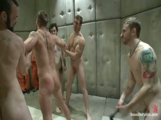 gay, gays, homosexual