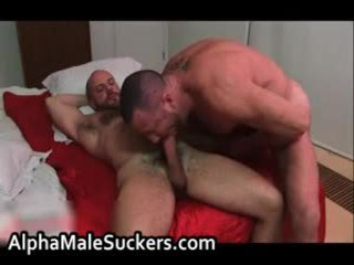 Highly Hot Homo Men Fucking And Sucking Porn 47 By Alphamalesuckers