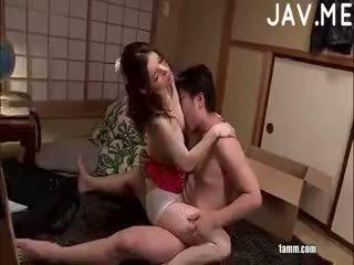 japonec, výstřik, kotě