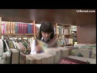 boret, skolejente, geek, library