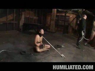 Ázijské násťročné otrok semeno covered!