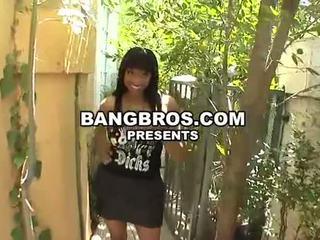 see big tits, hq big breast channel, hooters