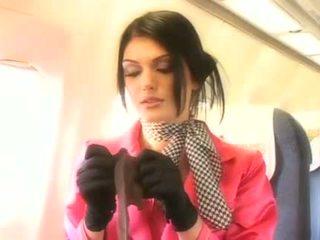 Stjuardesë