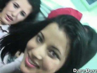 brunetka, coed, kolegium