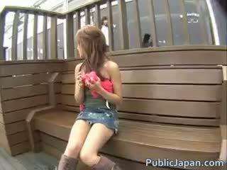 szép japán tréfa, ellenőrzés kukkoló, fajok minden