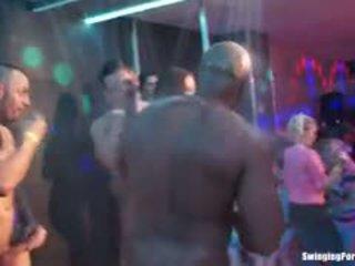 Seductive zabava hoes jebemti v seks orgija