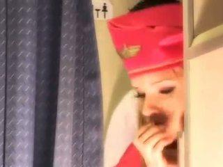 hq uniforme più caldo, air hostesses