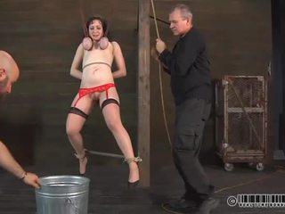 Bailarina needs salvaje taming
