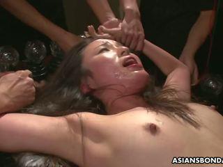 japonés, mamada, orgia