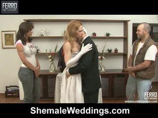 Smíchat na filmů podle transsexuál weddings